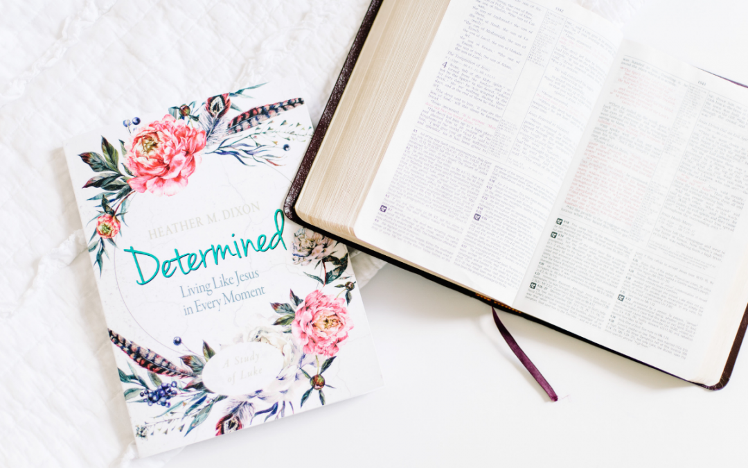 Determined by Heather M Dixon