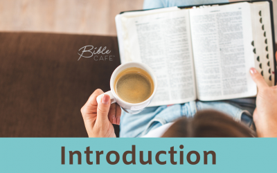 Seamless Bible Study Introduction Week